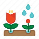 bloom, farming, flower, garden, gardening, rose, spring icon