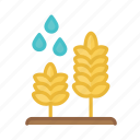 agriculture, environment, farm, farming, field, nature, plant icon