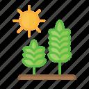 agriculture, environment, farming, garden, green, nature, plant
