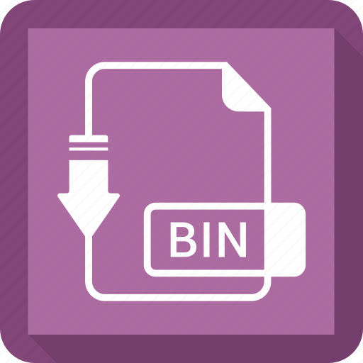 bin, document, extension, file, format icon