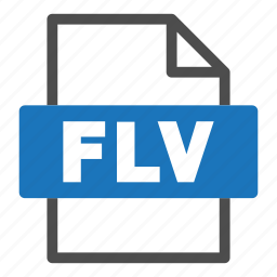 document, file, file format, flv, format, interface icon