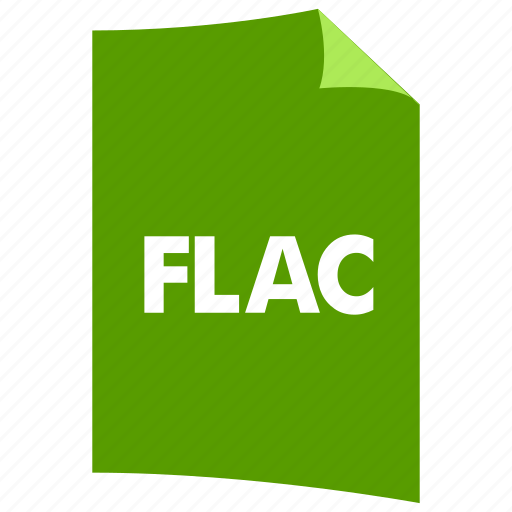 data format, document, extension, file format, filetype, flac, flash icon