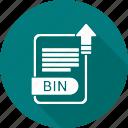bin, document, type, file, format