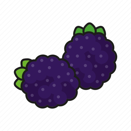 berries, blackberry, brambleberry, food, fresh, fruit icon