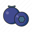 blueberry, food, fresh, fruit icon