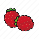 food, fresh, fruit, raspberries, raspberry icon