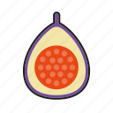 fig, food, fresh, fruit icon