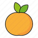 apricot, food, fresh, fruit, peach icon
