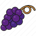 blue, food, fresh, fruit, grapes, wine icon