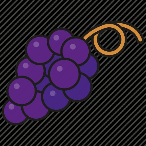 blue, food, fresh, fruit, grapes, wine icon