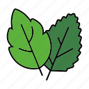 equipment, gardening, leaf, leaves, plant icon