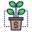 business, dollar, finance, grow, interest, invest, plant