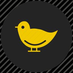 bird, dove, faith, fly, peace, pigeon, wings icon