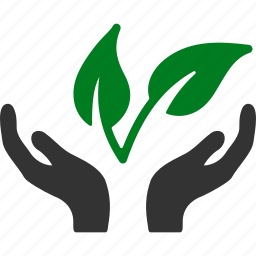 business project, eco, ecology, environment, health, plant, startup icon
