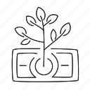 dollar, grow, money, startup, tree icon