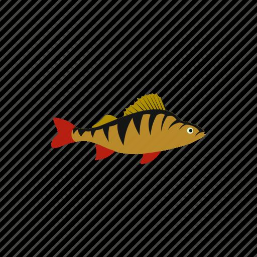 animal, fin, fish, fishing, perch, river, striped icon