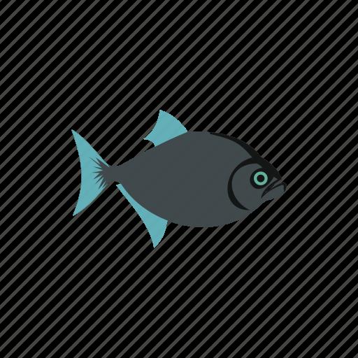animal, fish, gray, marine, nature, ocean, sea icon