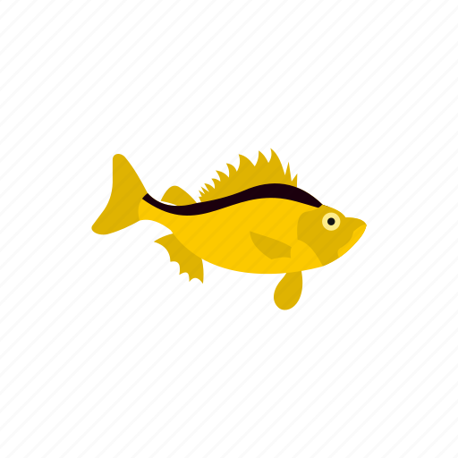 animal, fish, marine, nature, sea, strip, stronotus icon