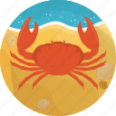 crab, fish, food, meal, sand, sea, seafood icon
