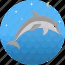dolphin, fish, food, sea, seafood