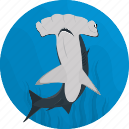 fish, food, hammerhead, meal, sea, seafood, shark icon