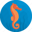 fish, food, horse, meal, sea, sea horse, seafood icon