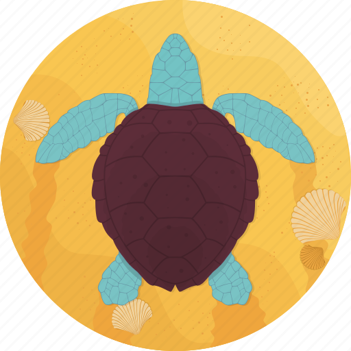 fish, food, sand, sea, seafood, turtle icon