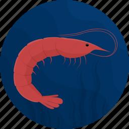 fish, food, kitchen, meal, sea, seafood, shrimp icon