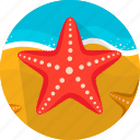 fish, food, sand, sea, seafood, starfish icon