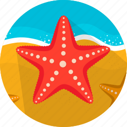 fish, food, sand, sea, seafood, starfish icon