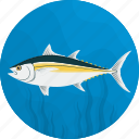 fish, fishing, food, meal, sea, seafood, tuna icon