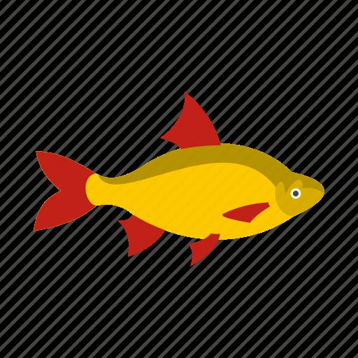 fisfing, fish, fishing, fresh, sea, seafood, tasty icon