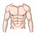 body, fitness, man, muscles, part, sport, torso