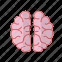 brain, care, fitness, health