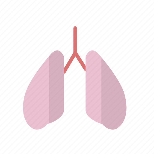 care, fitness, health, lung, organ icon