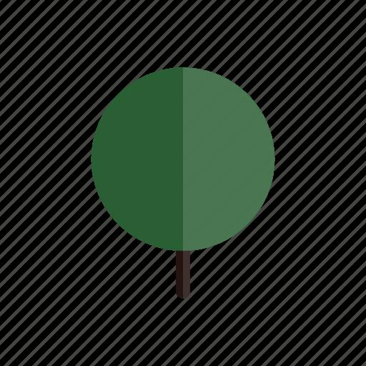 autumn, circle, green, nature, plant, tree icon