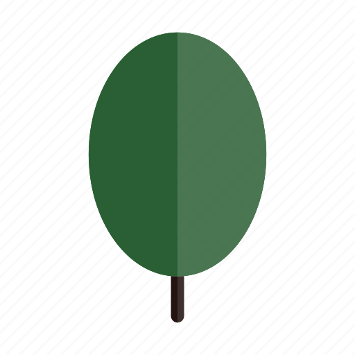 autumn, green, nature, oval, plant, tree icon