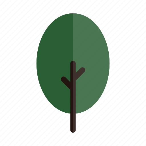 autumn, branches, green, nature, oval, plant, tree icon