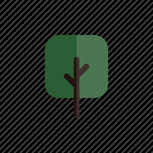 autumn, branches, green, nature, plant, square, tree icon