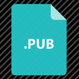 file, file extension, file format, file type, pub icon