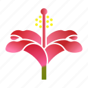 bloom, flower, hibiscus, plant icon