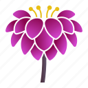 bloom, dahlia, flower, tuber icon