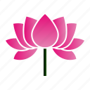lotus, patience, flower, bloom, purity icon