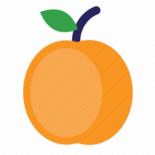 Apricot, eating, food, foods, fruit, fruits, healthy icon - Download on Iconfinder