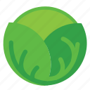 cabbage, eating, food, foods, green, vegeteriant, vegeteriants, veggie, veggies icon