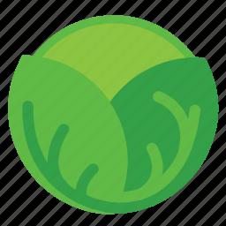 cabbage, eating, food, foods, green, vegeteriant, vegeteriants, veggie, veggies icon