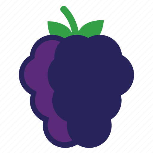 berry, blackberrie, blackberries, eating, food, foods, fruit, fruits, healthy, purple icon