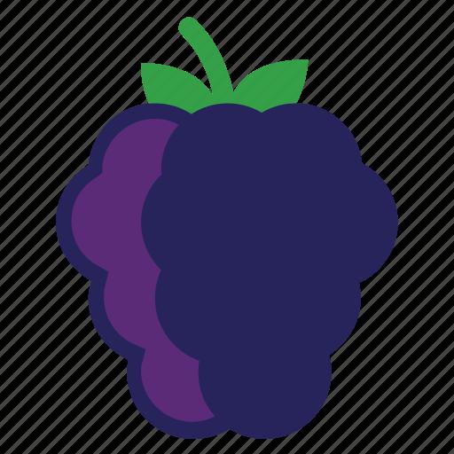 Blackberrie, eating, blackberries, food, purple, foods, fruit, berry, fruits, healthy icon