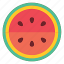eating, food, healthy, foods, fruit, green, fruits, watermelon, red