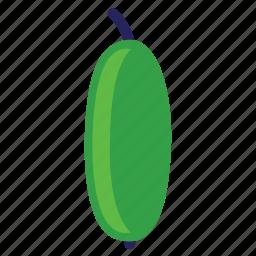 cucumber, eating, food, foods, green, healthy, vegeteriant, vegeteriants, veggie, veggies icon